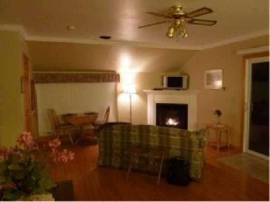 Oakwood Manor Bed and Breakfast: one end of the suite