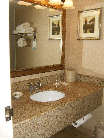 Red Lion Hotel Pocatello: bathroom sink area
