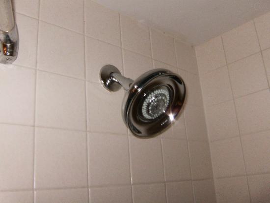 Red Lion Hotel Pocatello : showerhead