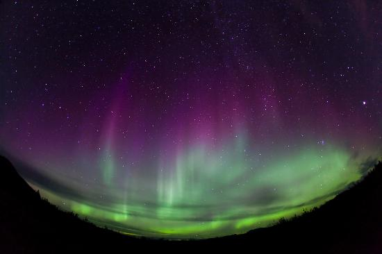 Whitehorse, Canada: Aurora Borealis Yukon