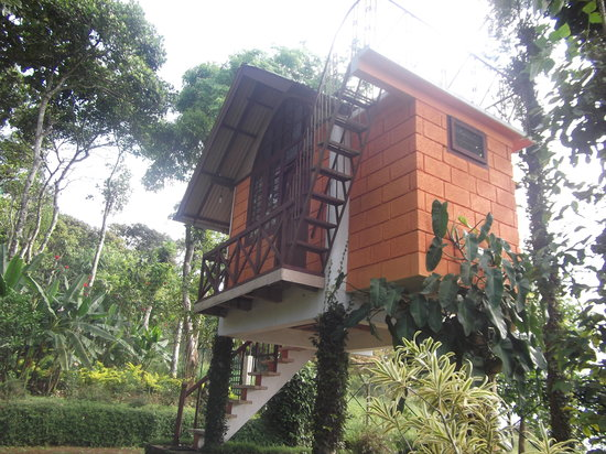 Manayath Heritage: Treehouse accom