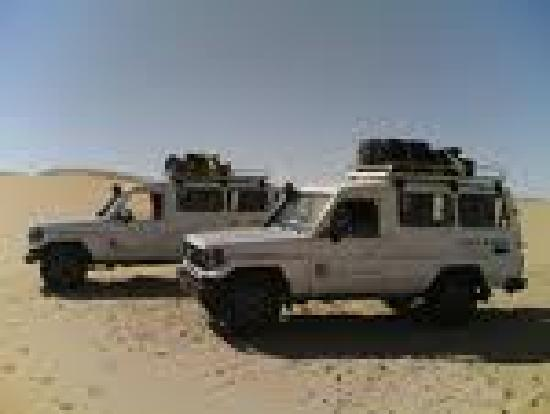 Best Egypt Shore Day Excursions: Safari