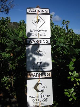 Wai'anapanapa State Park: Beautiful but Dangerous