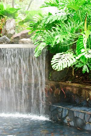 Hotel El Silencio del Campo: This is the hot spring pool and artificial waterfall described in our review.