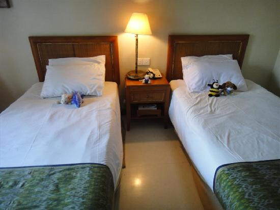 The Shalimar Boutique Hotel: Our room