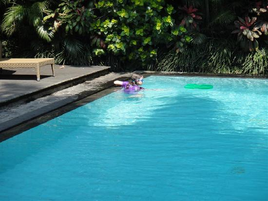 The Shalimar Boutique Hotel: Pool