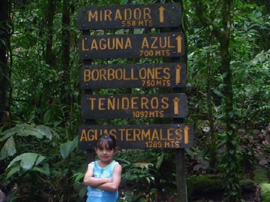 Hotel Los Volcanes: Tour rio celeste