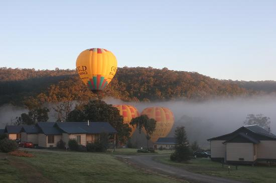 Yering Gorge Cottages: Hot Air ballooning at Yering Gorge