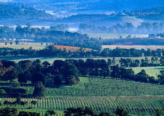 Yering Gorge Cottages: Stunning Views of the Yarra Valley