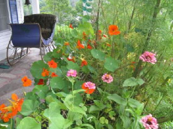 Londonderry Inn : Flowers on the front porch