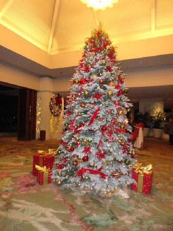 Christmas In Hawaii Decorations.Hilton Hawaiin Village Christmas Tree Picture Of Hilton