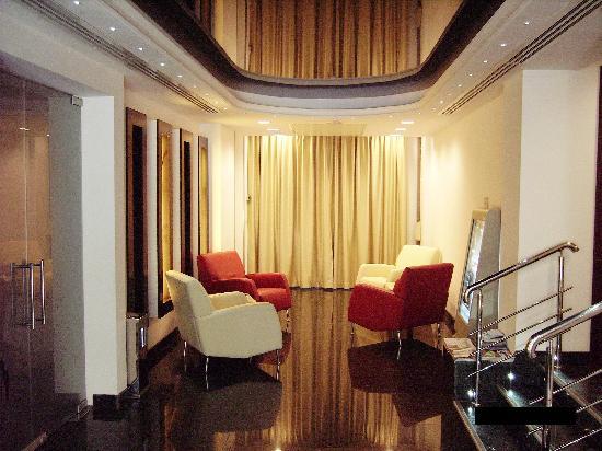 Minerva Hotel : Himalaya
