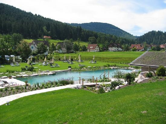 Hotel Engel Obertal : Vue de l'étang de baignade et un des saunas extérieurs