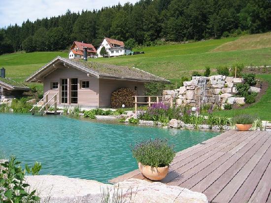 Hotel Engel Obertal : Un des deux saunas extérieurs
