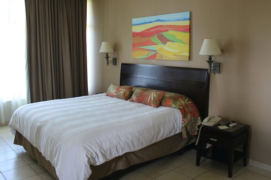 Flamingo Beach Resort & Spa: Ocean Front Suite