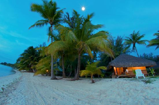 Eden Beach Hotel Bora Bora : Bongaloo