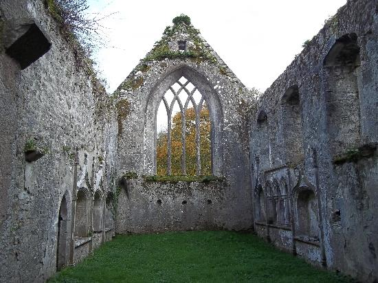 Old Franciscan Friary: Yes, the grass was really this green the end of November.