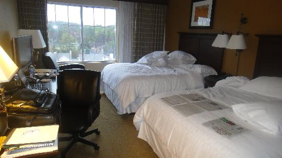 Sheraton Atlanta Perimeter North: Nice functional room, nothing fancy