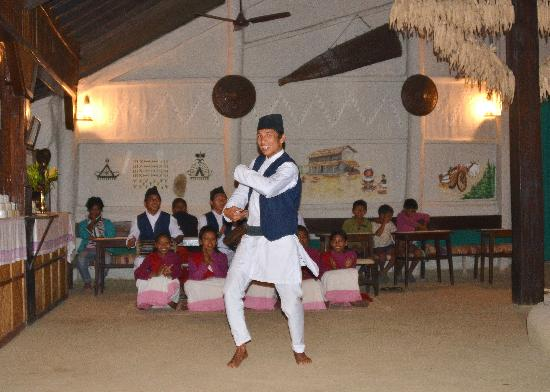 Tiger Tops Tharu Lodge: Traditional dancing