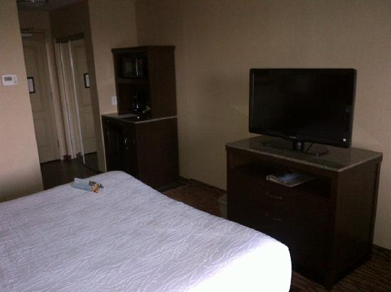 Holiday Inn Express Hotel & Suites Watertown-Thousand Islands: Room 2