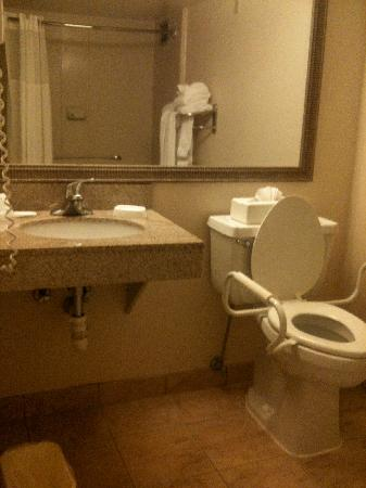 Bathroom in handicap accessible room sink counterspace is smaller due to toilet picture of for Wheelchair accessible sink bathroom