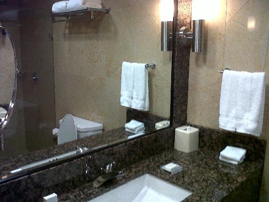 Hilton Garden Inn Tuxtla Gutierrez: cuarto de baño