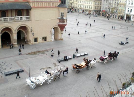 The Bonerowski Palace: Вид из окна номера