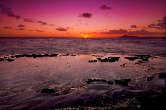 Not only witness the beauty, capture it with Oahu Photography Tours