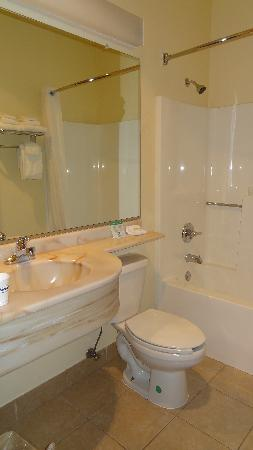 Microtel Inn & Suites by Wyndham Morgantown: Bathroom