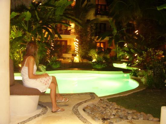 La Tortuga Hotel & Spa: Vista de la pileta