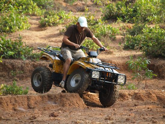 Sai Vishram Beach Resort: ATVs available for any terrain at Sai Vishram