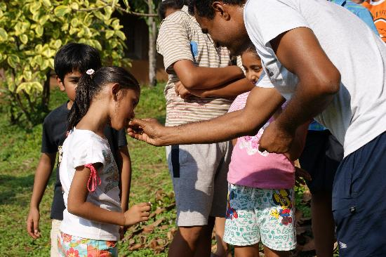 Sai Vishram Byndoor: Children tasting Organic Fruits during the summer camp..