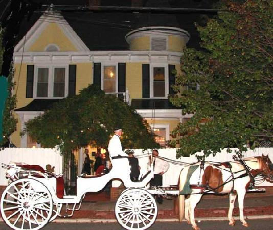 Stanley House Inn : Horse Drawn Carriage in front of the Stanley House