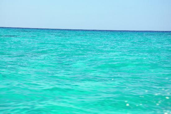Resultado de imagen de mar azul caribe