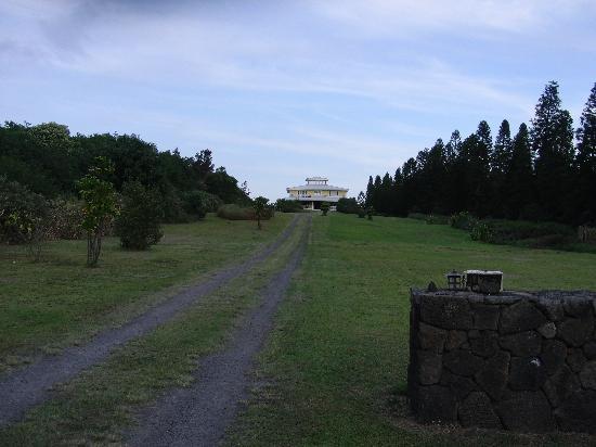 Kalaekilohana: huge garden