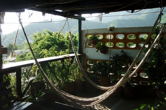 Hotel Oso Perezoso: Hammocks next to dining room