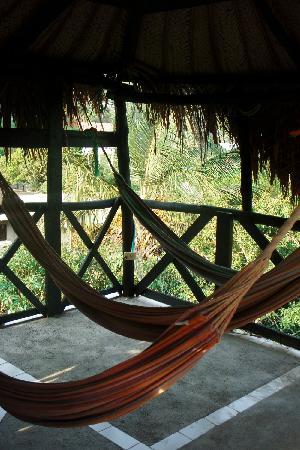 Hotel Oso Perezoso: Hammocks under the shade