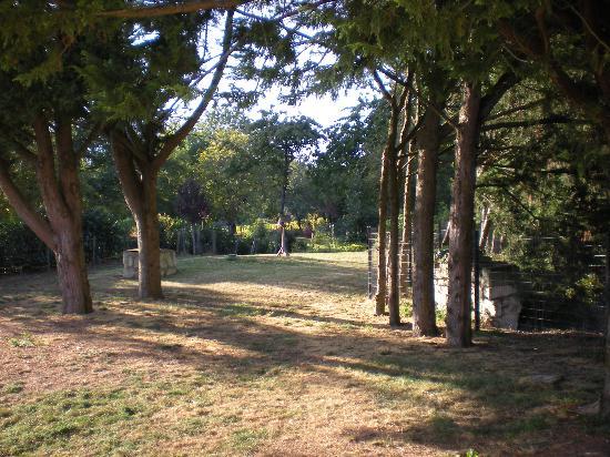 Cizay-la-Madeleine, Prancis: Jardin