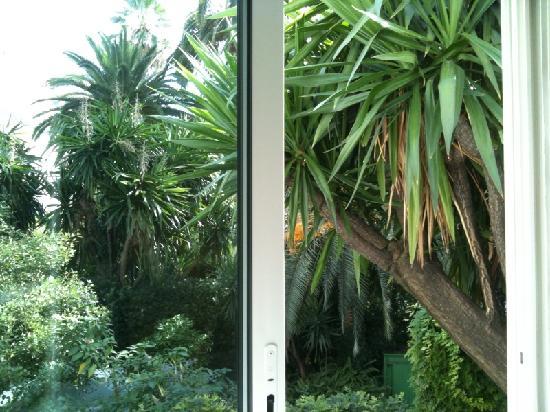Hotel Festival: vue chambre coté jardin