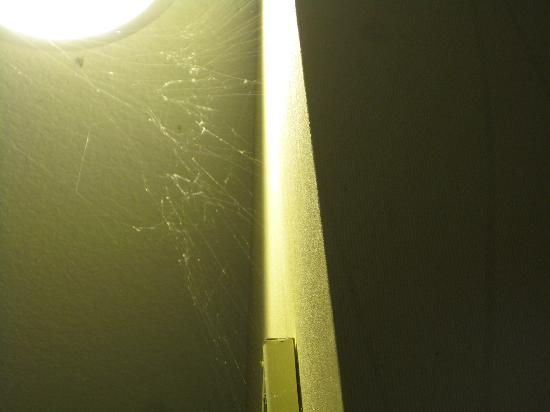 Comfort Suites Hot Springs : Cobwebs in workout room