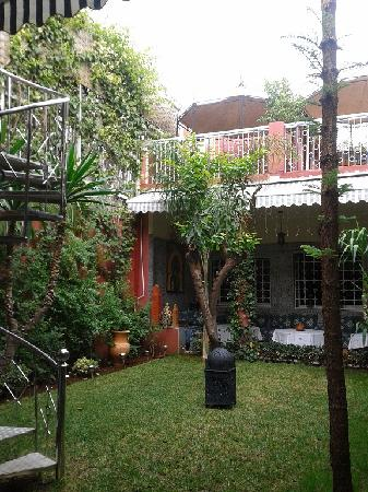 Dar Aliane : Le patio