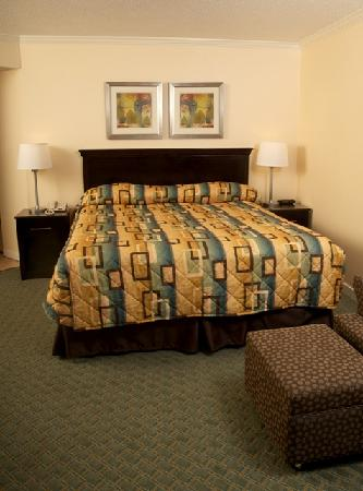 The Patricia Grand, Oceana Resorts: Oceanfront and ocean view king rooms have recently been remodeled.