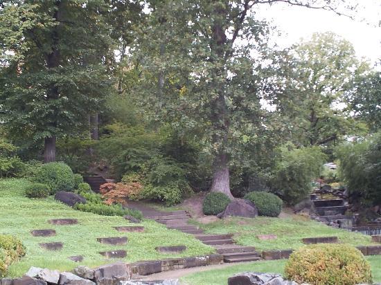 Japanischer Garten (Japanese Garden): Lush foliage