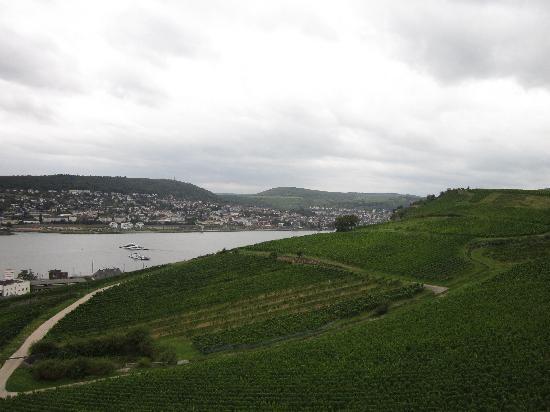Niederwald Monument (Niederwalddenkmal): View to the Rhine