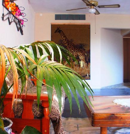 Tsitsicamma Inn: Sala de estar.