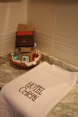Hotel Cenera: Detalle Baño