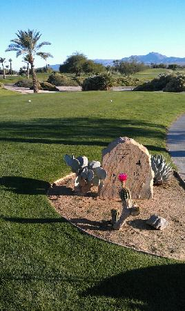 Borrego Springs Resort & Spa: Beautiful course