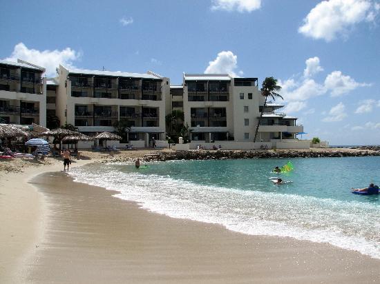 Flamingo Beach Resort In Sint Maarten