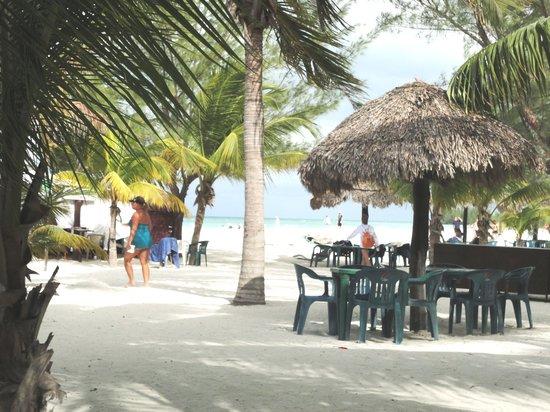 Isla Pasión: Scenic Views of the beach area