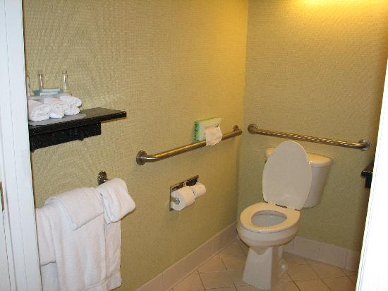 Holiday Inn Express Kent Island : Handicapped accessible bath